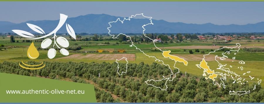 Πραγματοποιήθηκε η δεύτερη τεχνική συνάντηση του έργου Authentic olive net